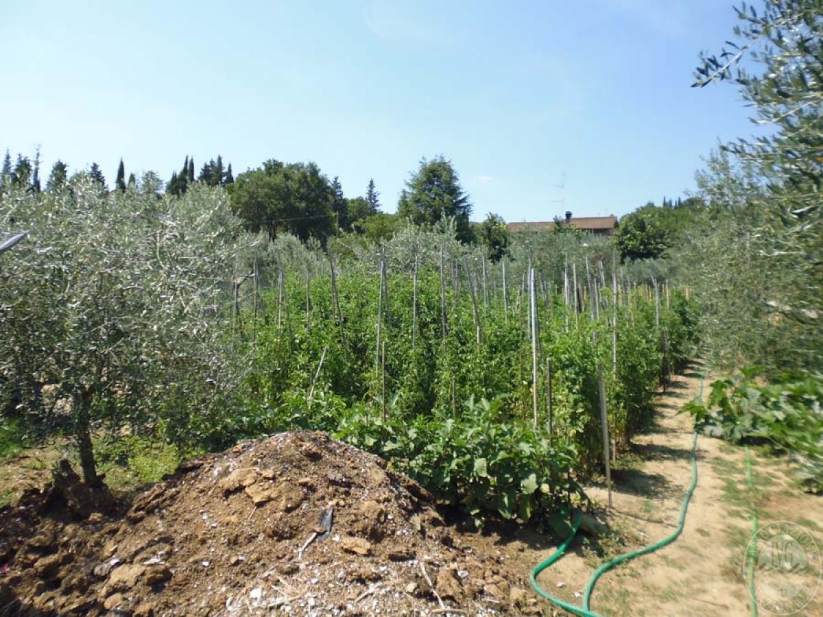 Serre per coltivazione ad AREZZO in loc. Chiassa Superiore - Lotto 2 9