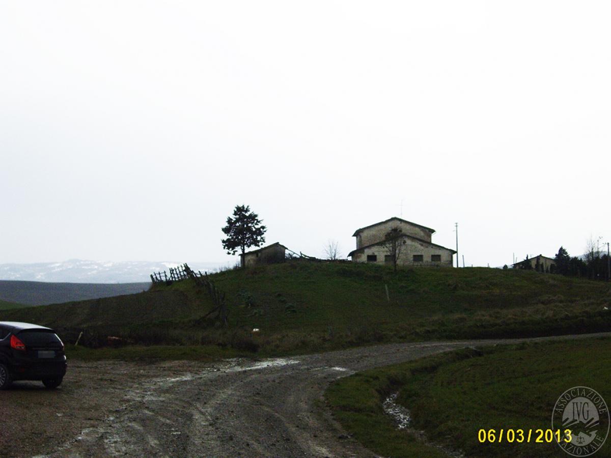 Terreni a CASTIGLIONE D'ORCIA in località Casalino