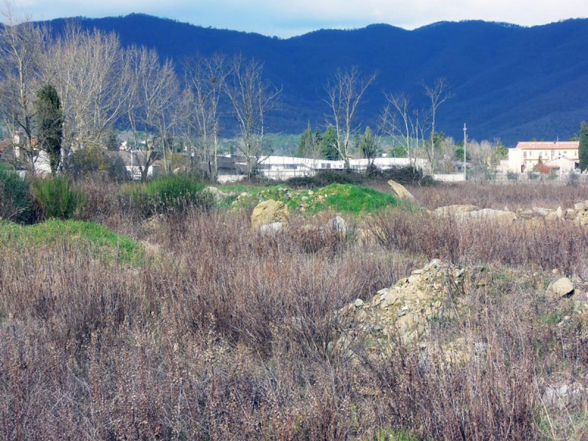 Terreni a Castiglion Fibocchi in loc. Moravia 0