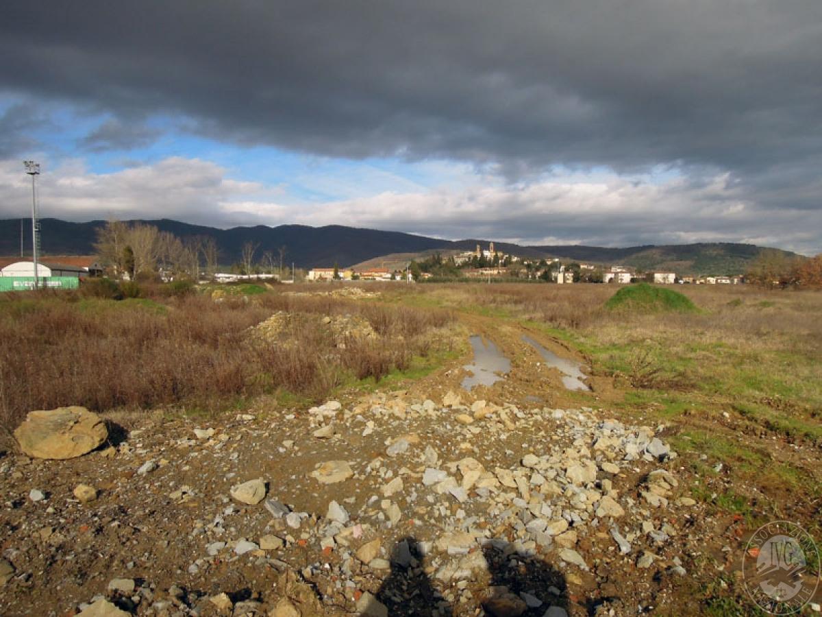 Terreni a Castiglion Fibocchi in loc. Moravia