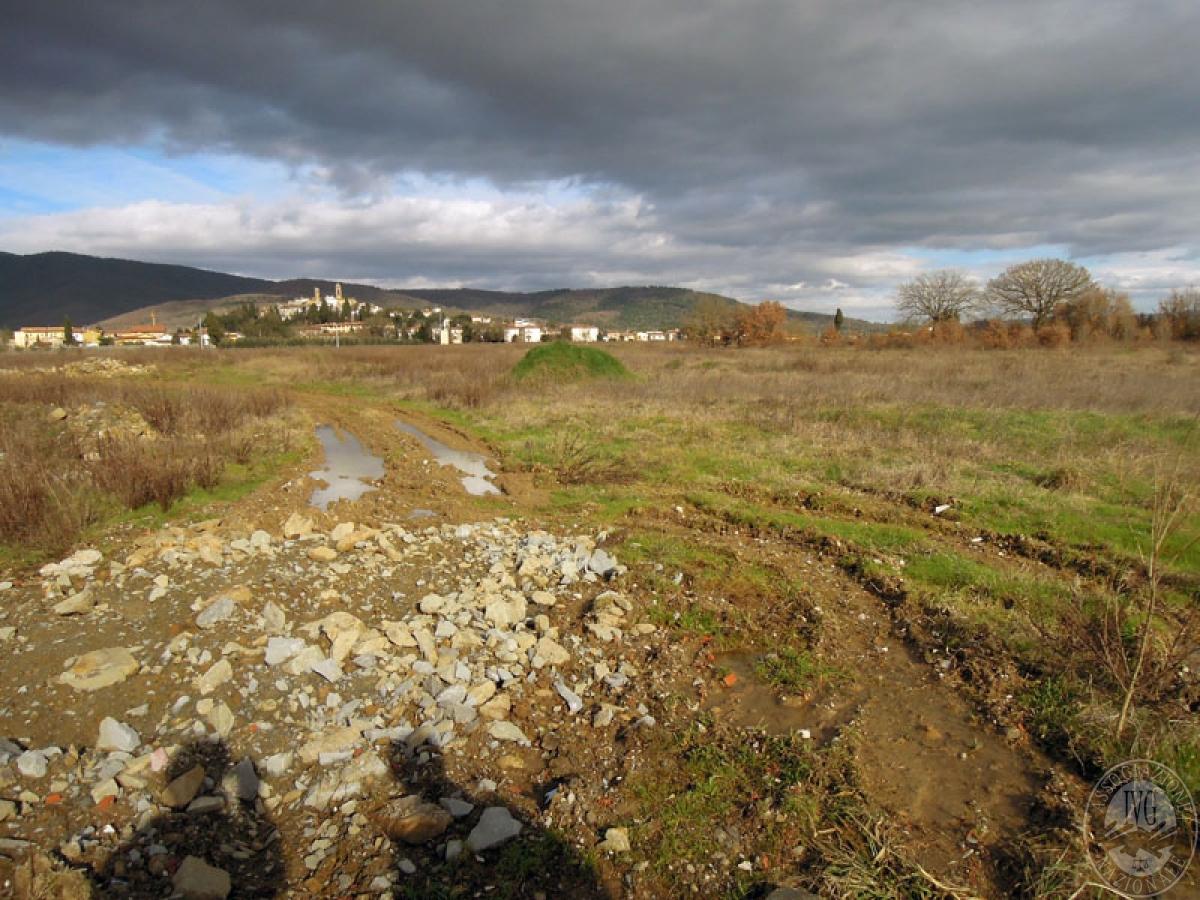 Terreni a Castiglion Fibocchi in loc. Moravia 2