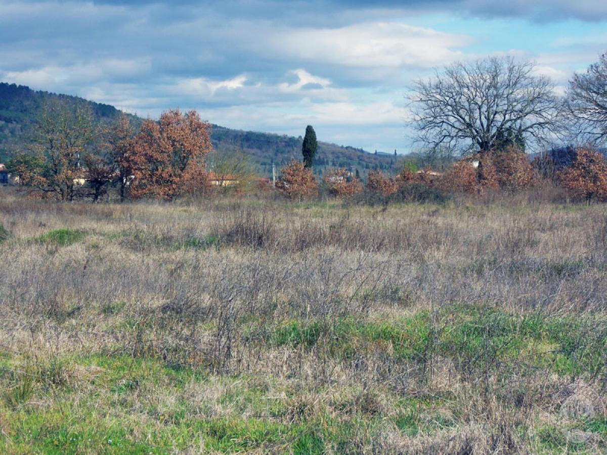 Terreni a Castiglion Fibocchi in loc. Moravia 1