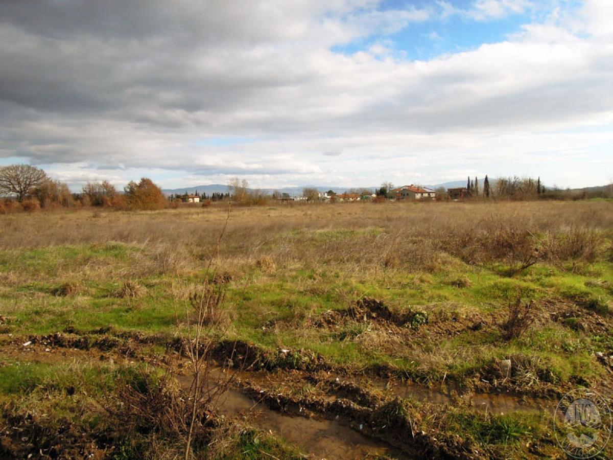 Terreni a Castiglion Fibocchi in loc. Moravia 3