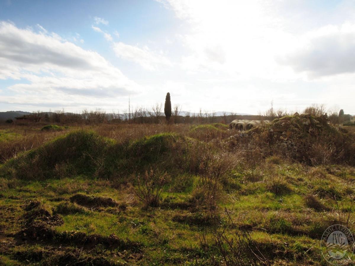 Terreni a Castiglion Fibocchi in loc. Moravia 4
