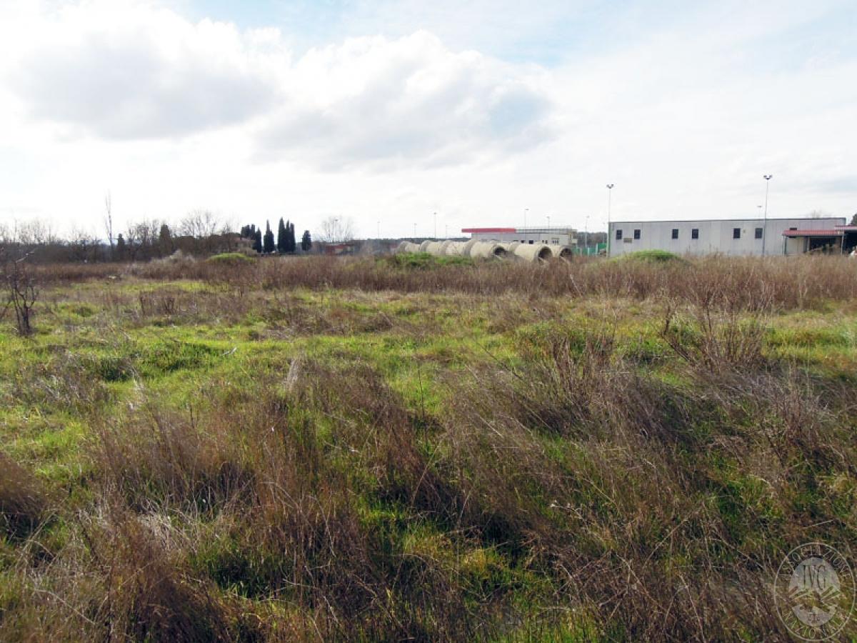 Terreni a Castiglion Fibocchi in loc. Moravia 8