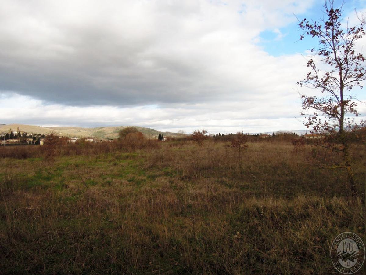 Terreni a Castiglion Fibocchi in loc. Moravia 12