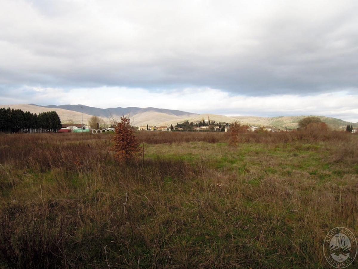 Terreni a Castiglion Fibocchi in loc. Moravia 11