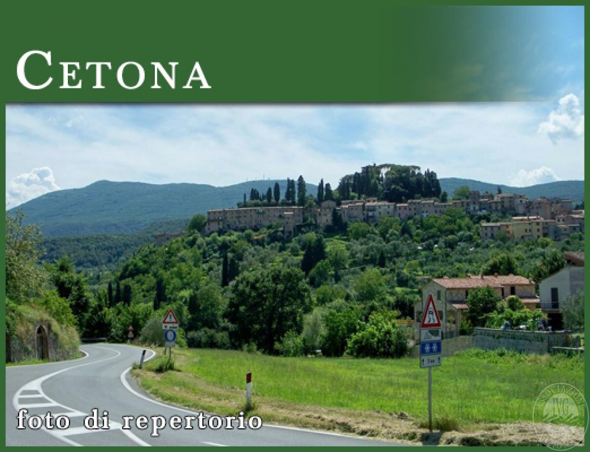 Terreni a CETONA in loc. Casa Pifferi - Lotto 1