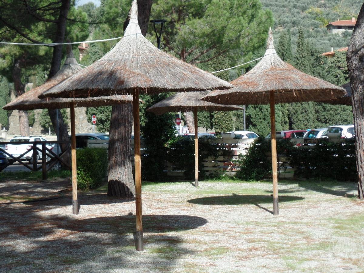 Arredo bar + ombrelloni    GARA ONLINE 25 SETTEMBRE 2020