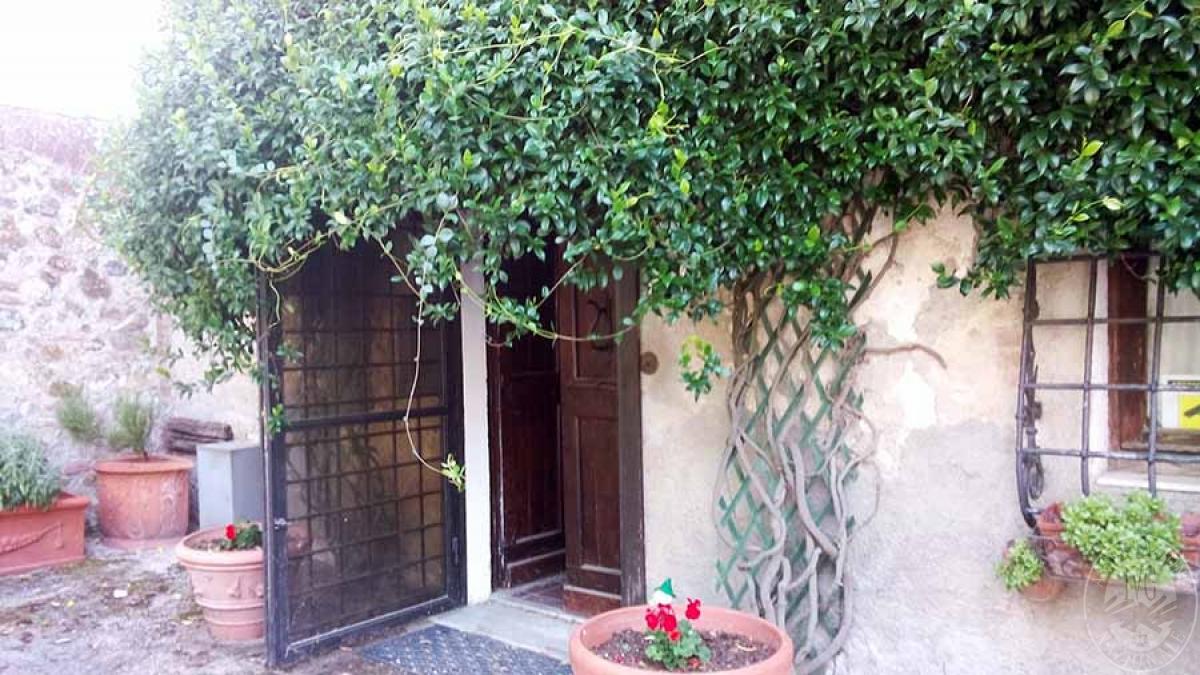 3 appartamenti a MURLO in Montepescini - Lotto 1