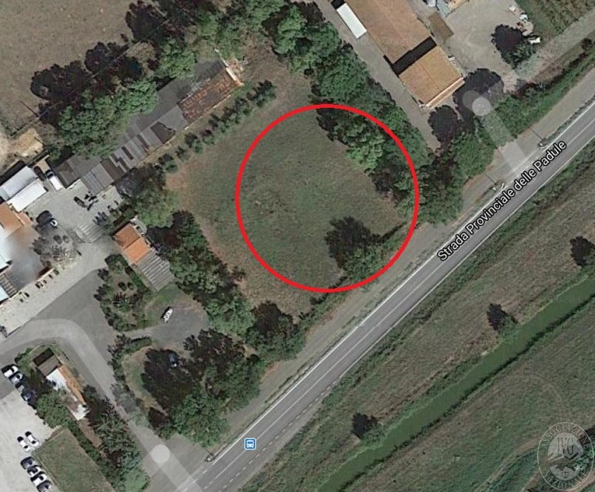 Terreno edificabile a CASTIGLIONE DELLE PESCAIA (GR), loc. Porta al Colle - LOTTO 3