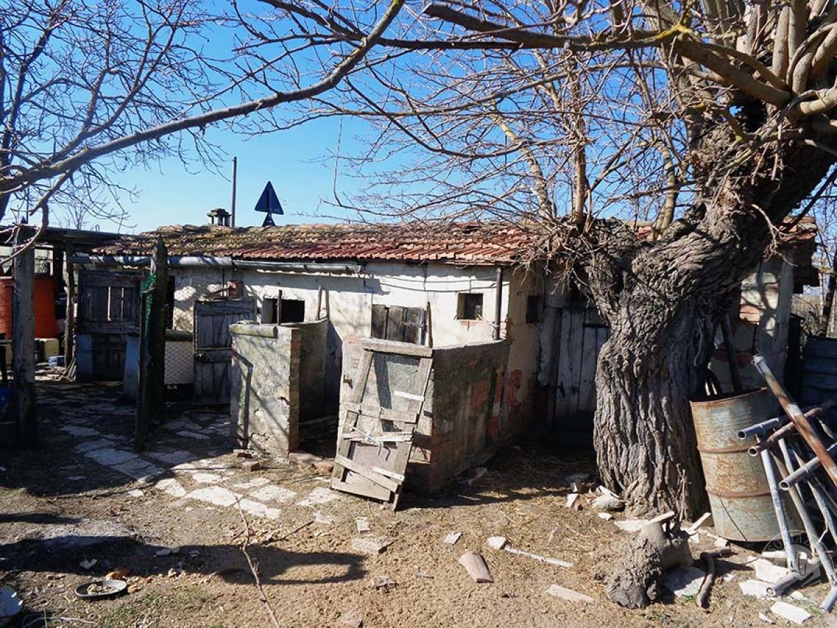 Fabbricati rurali e terreni ad ASCIANO in Via Lauretana Antica - Lotto 1