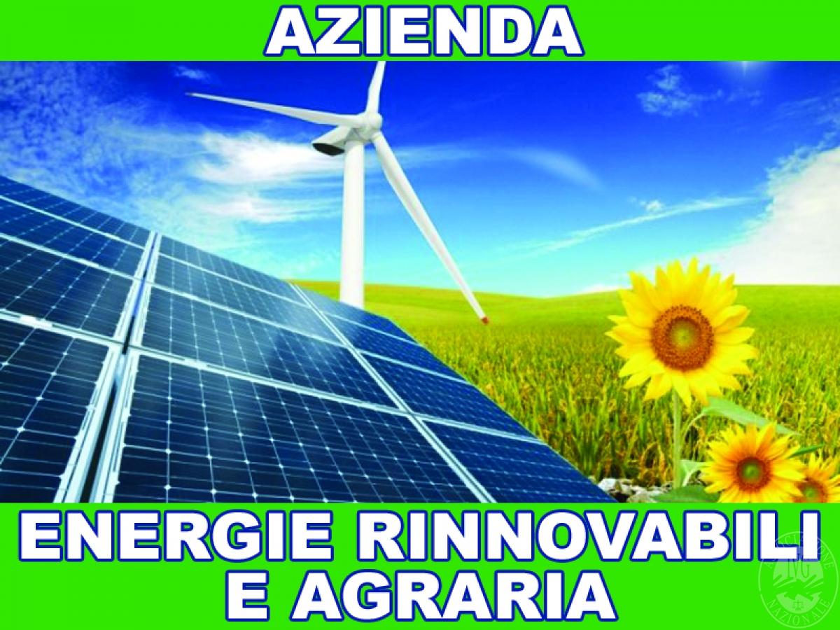 Vendita quote di partecipazione AZIENDA SETTORE ENERGIE RINNOVABILI E AGRARIA