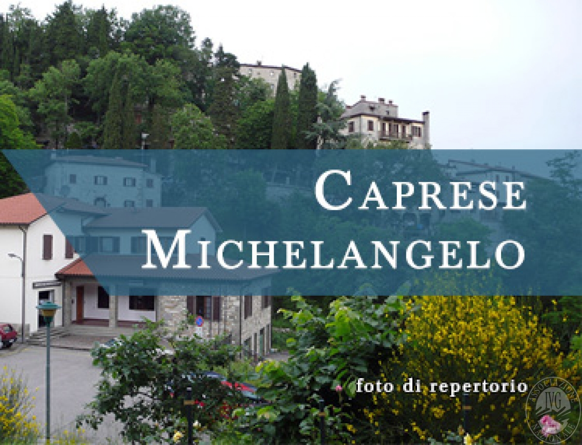 Terreni a CAPRESE MICHELANGELO in Via Ponte Singerna - Lotto 6