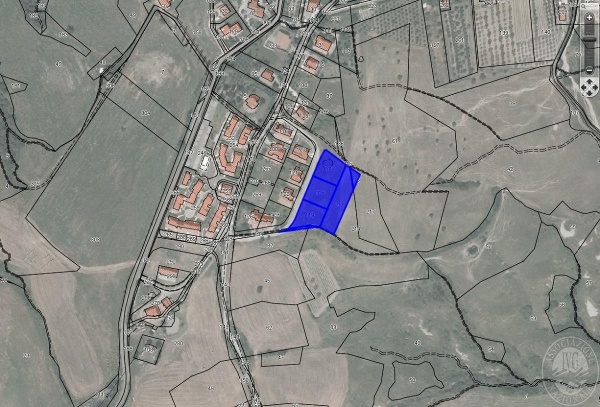 Terreni edificabili a RADICOFANI, loc. Contignano - LOTTO 2