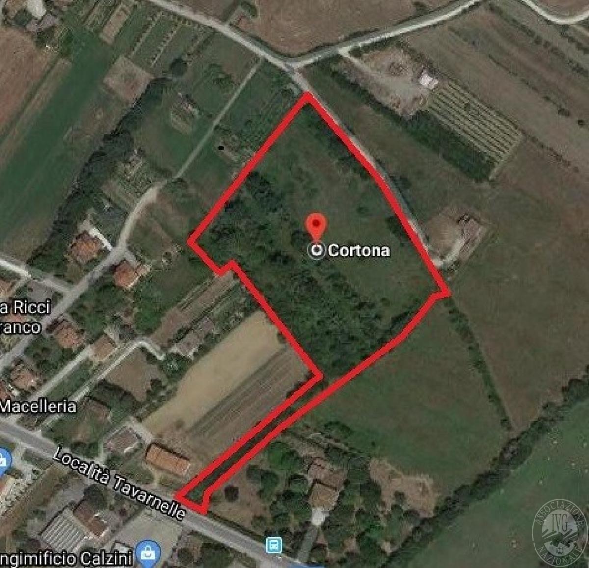 Terreni edificabili a CORTONA, loc. Tavarnelle - LOTTO 2
