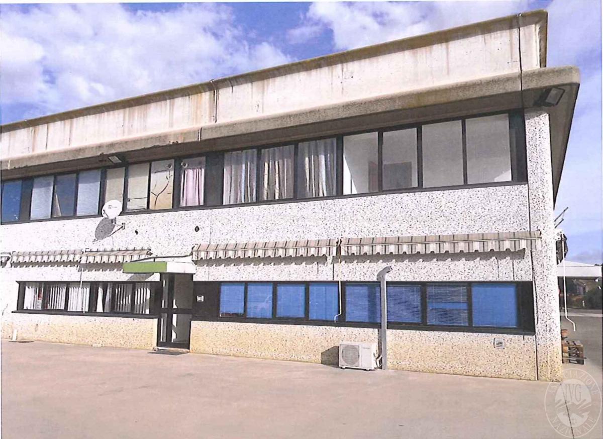 Opificio a MONTERIGGIONI in strada dei Laghi - Lotto 2