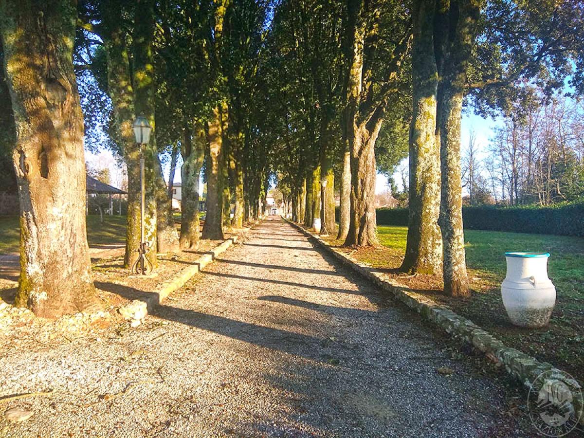 Villa e ristorante a CASOLE D'ELSA in loc. Mucellena-Maggiano 38
