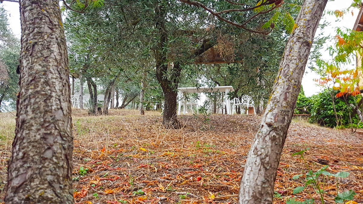 Borgo a CAVRIGLIA in loc. Fontebussi - Lotto 2 23