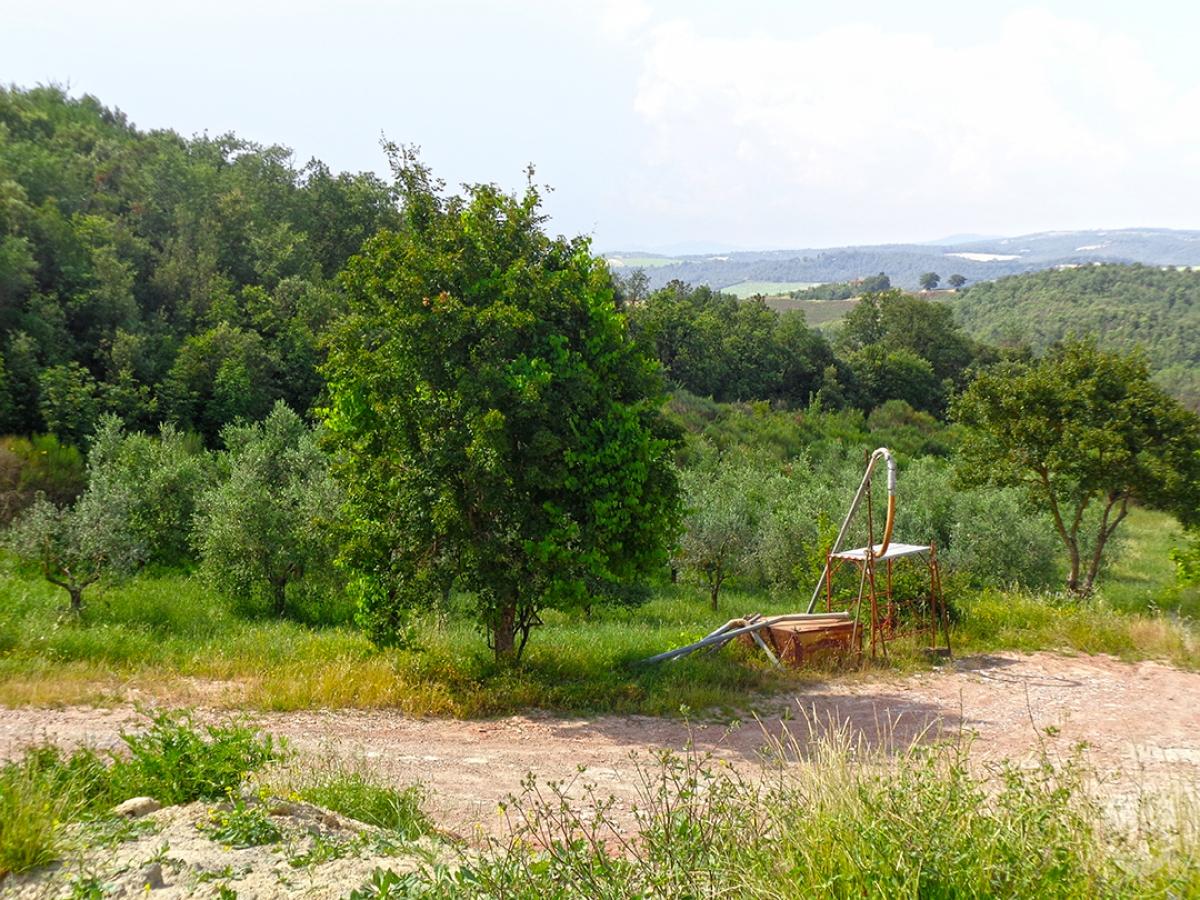 Terratetto a TREQUANDA in loc. Villa Abbadia Sicille 13