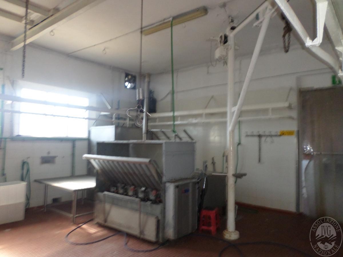 Arredo ed attrezzature per la lavorazione della carne   GARA ONLINE 13 OTTOBRE 2021 49