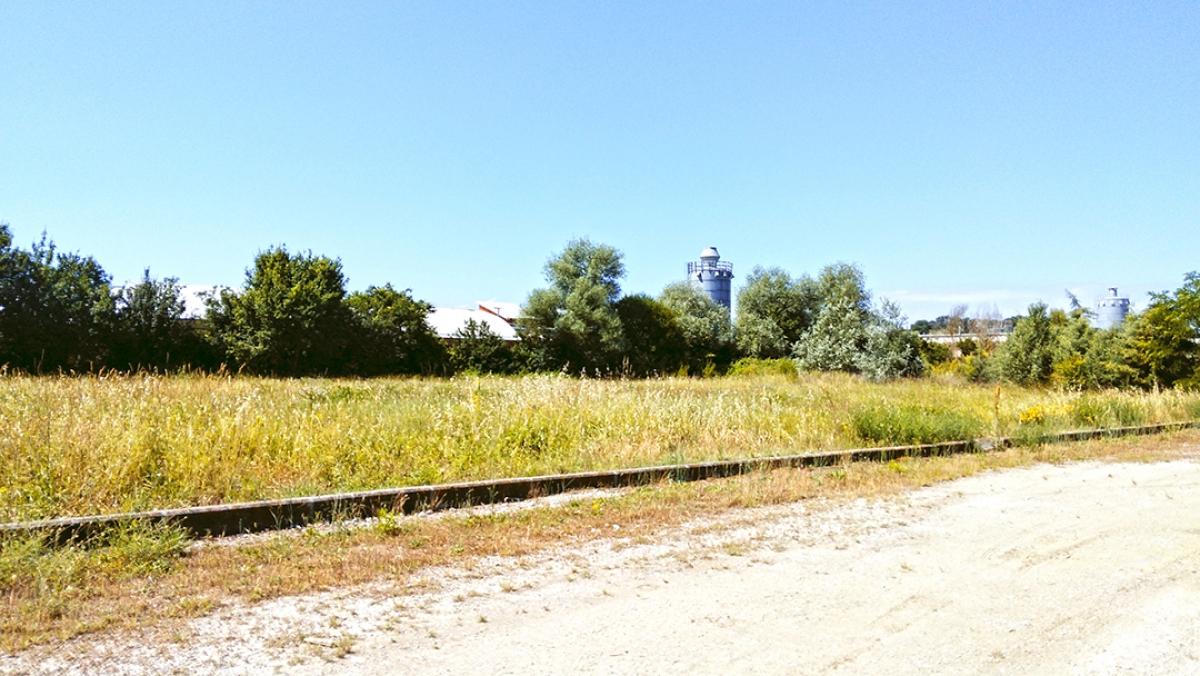 Terreno edificabile a Foiano della Chiana in Via Arezzo - Lotto 3 3