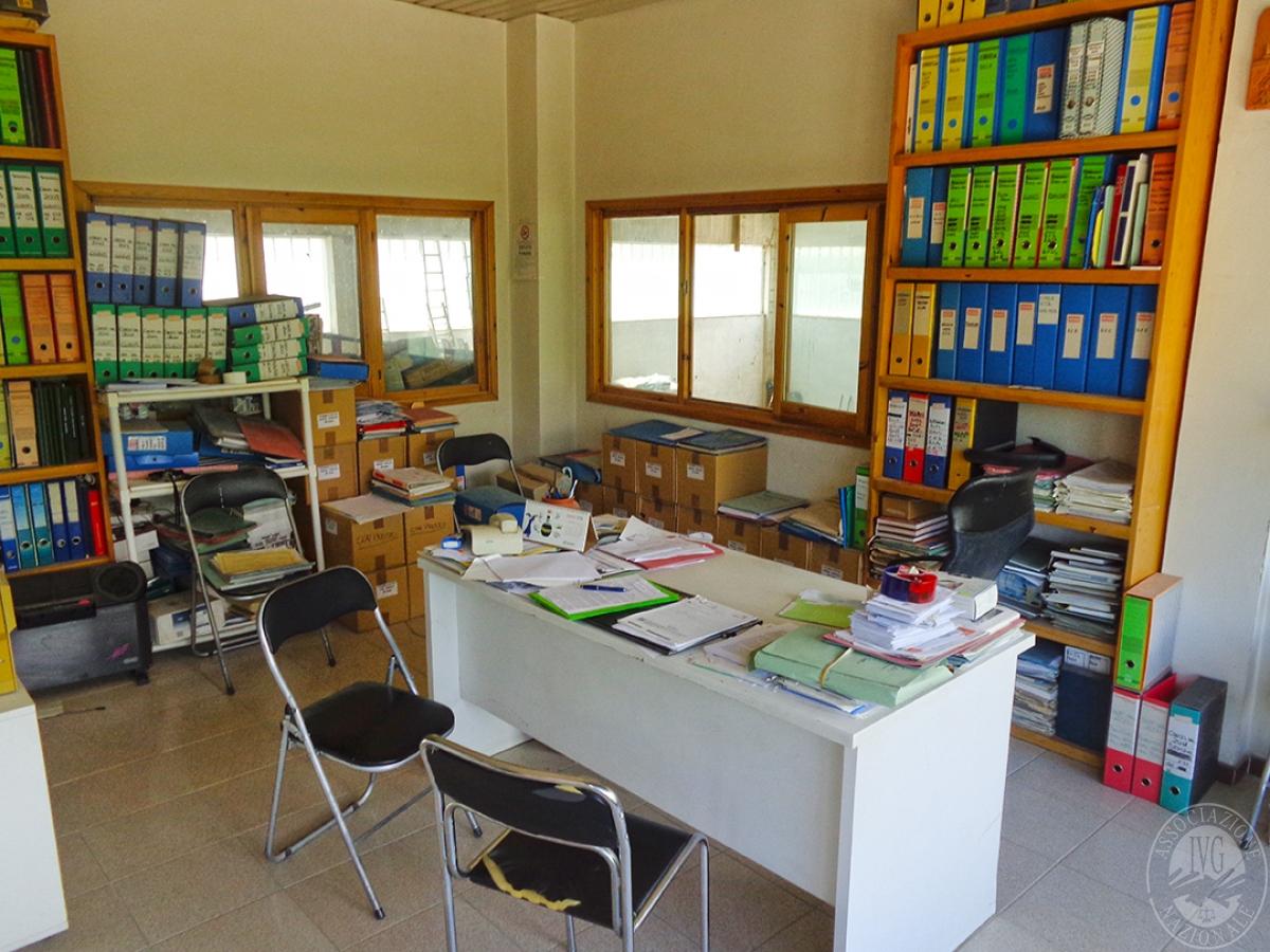 Laboratori e terreni a Trequanda in località Madonnino dei Monti 5