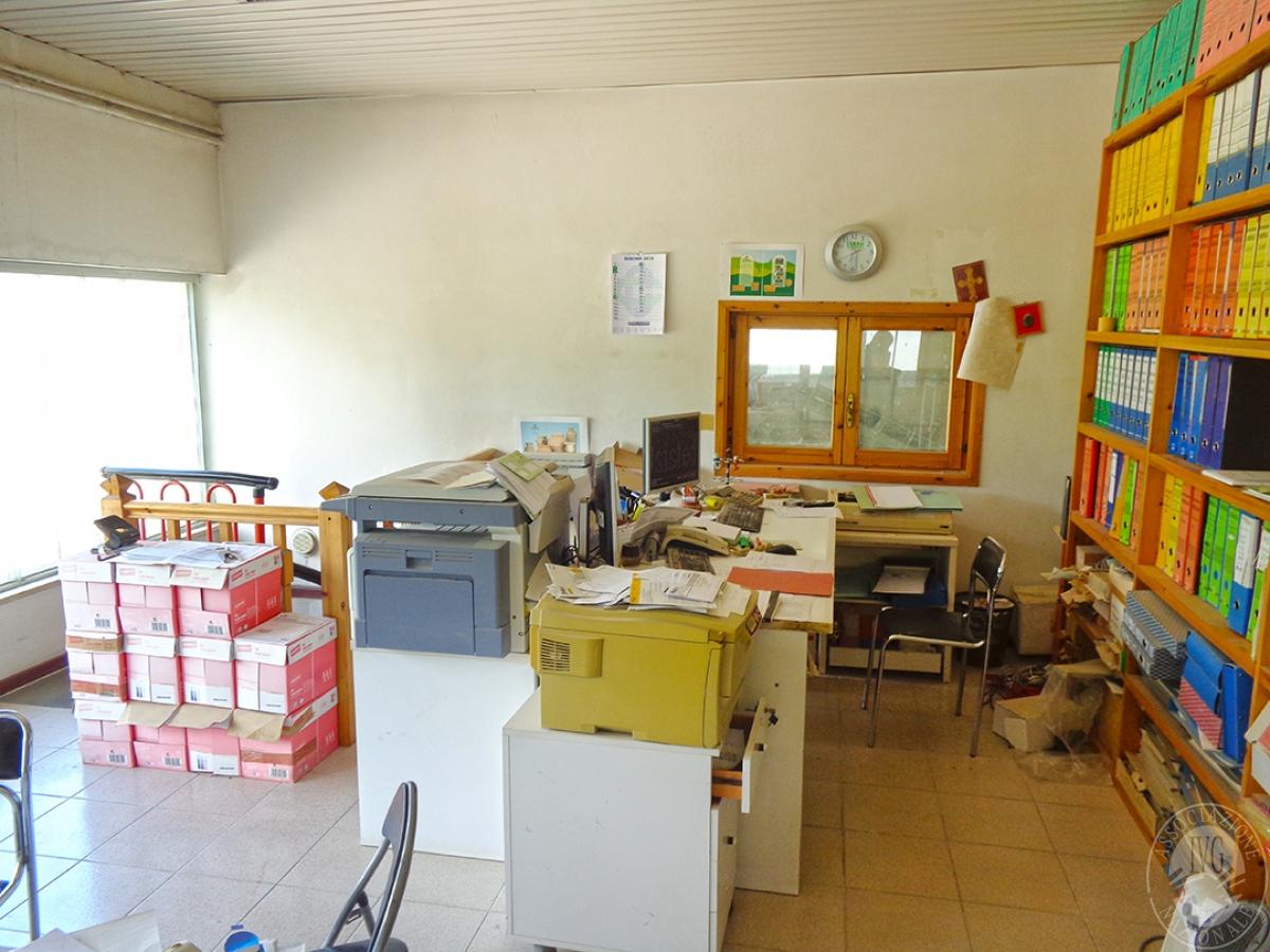 Laboratori e terreni a Trequanda in località Madonnino dei Monti 4