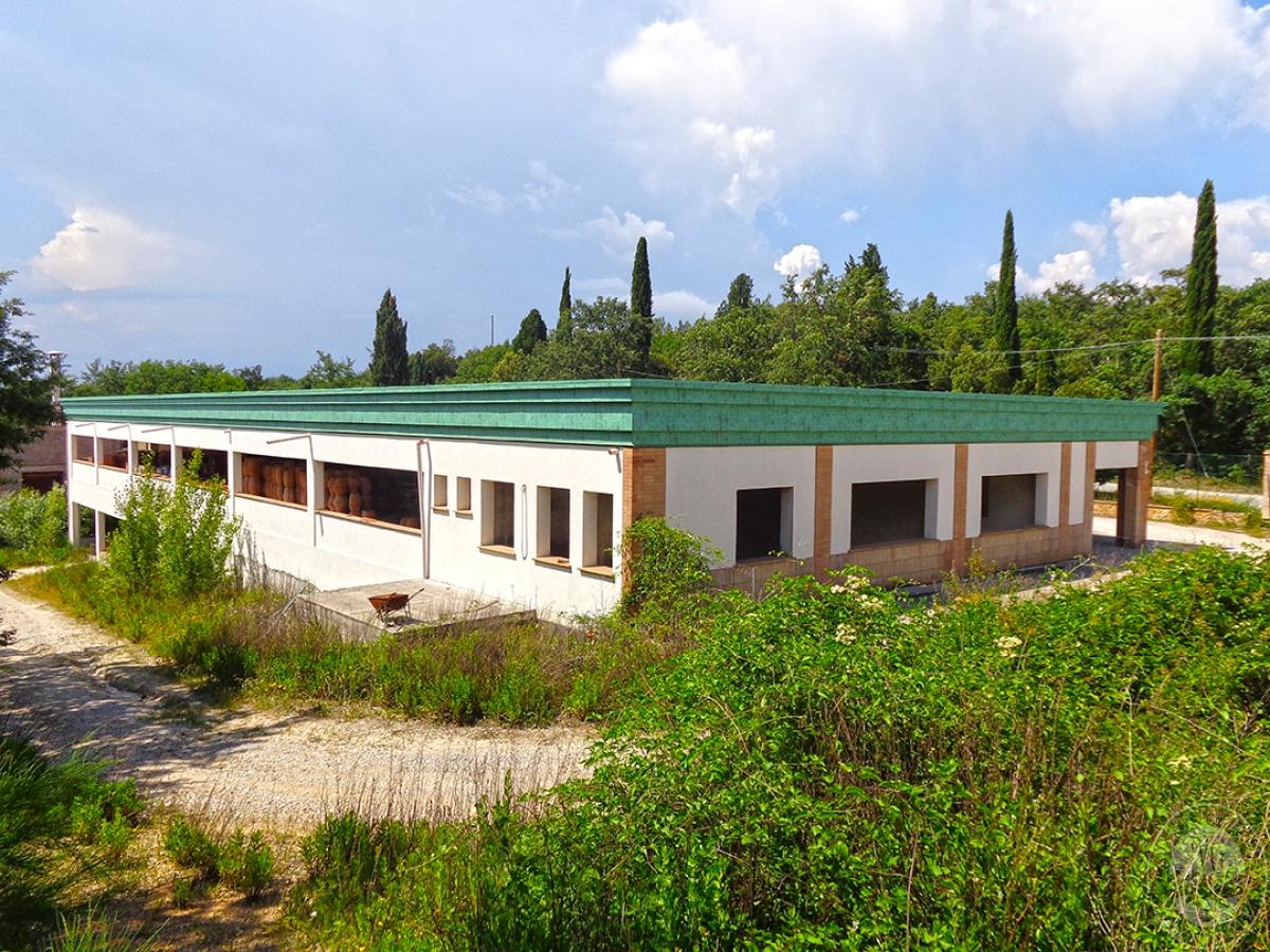 Laboratori e terreni a Trequanda in località Madonnino dei Monti 17