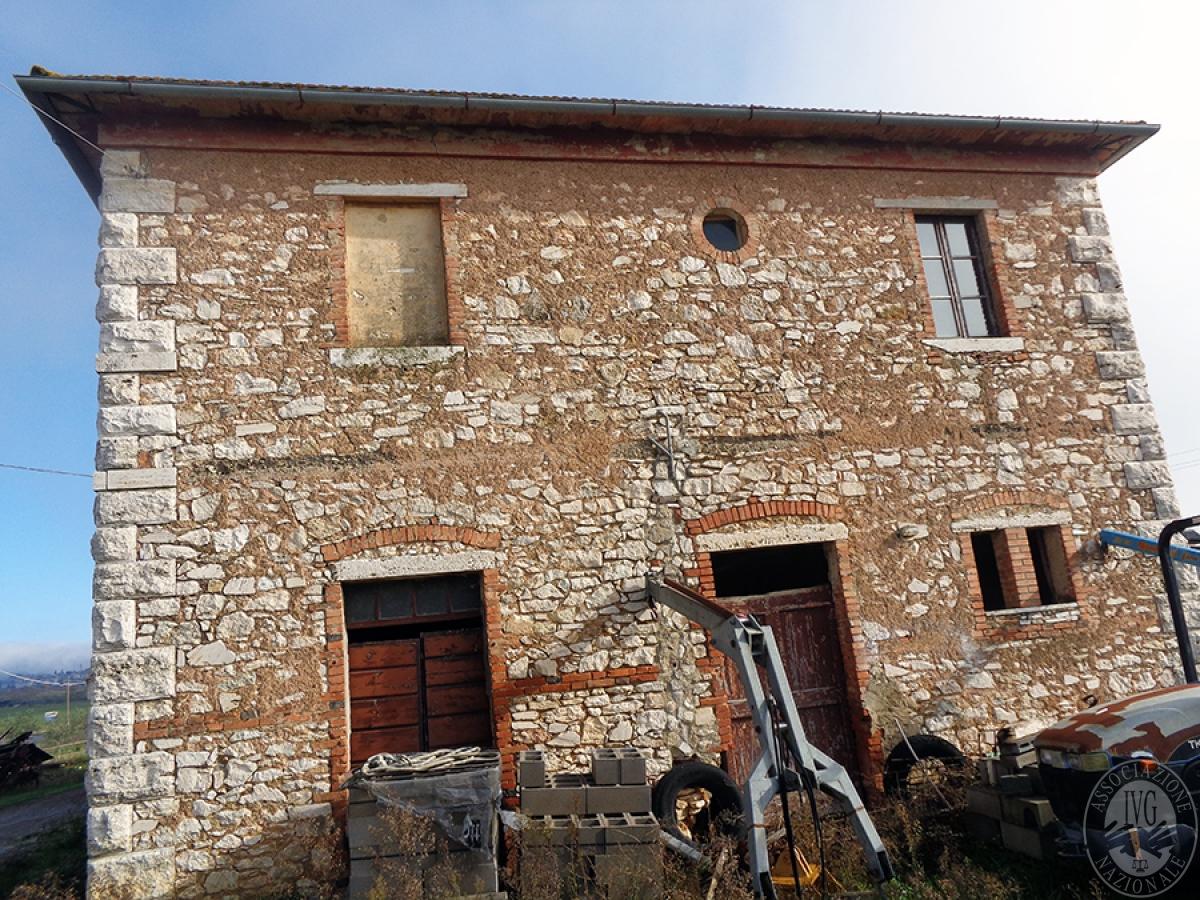 Appartamenti, magazzini, terreni ad ASCIANO in loc. Pianella 1