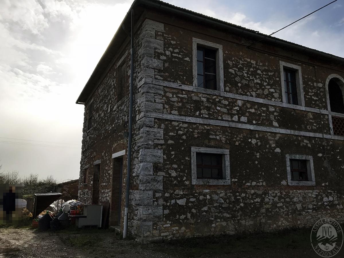 Appartamenti, magazzini, terreni ad ASCIANO in loc. Pianella 6