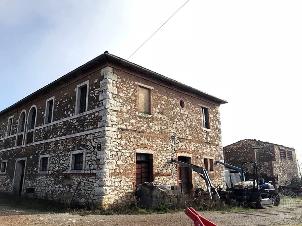 Appartamenti, magazzini, terreni ad ASCIANO in loc. Pianella 8