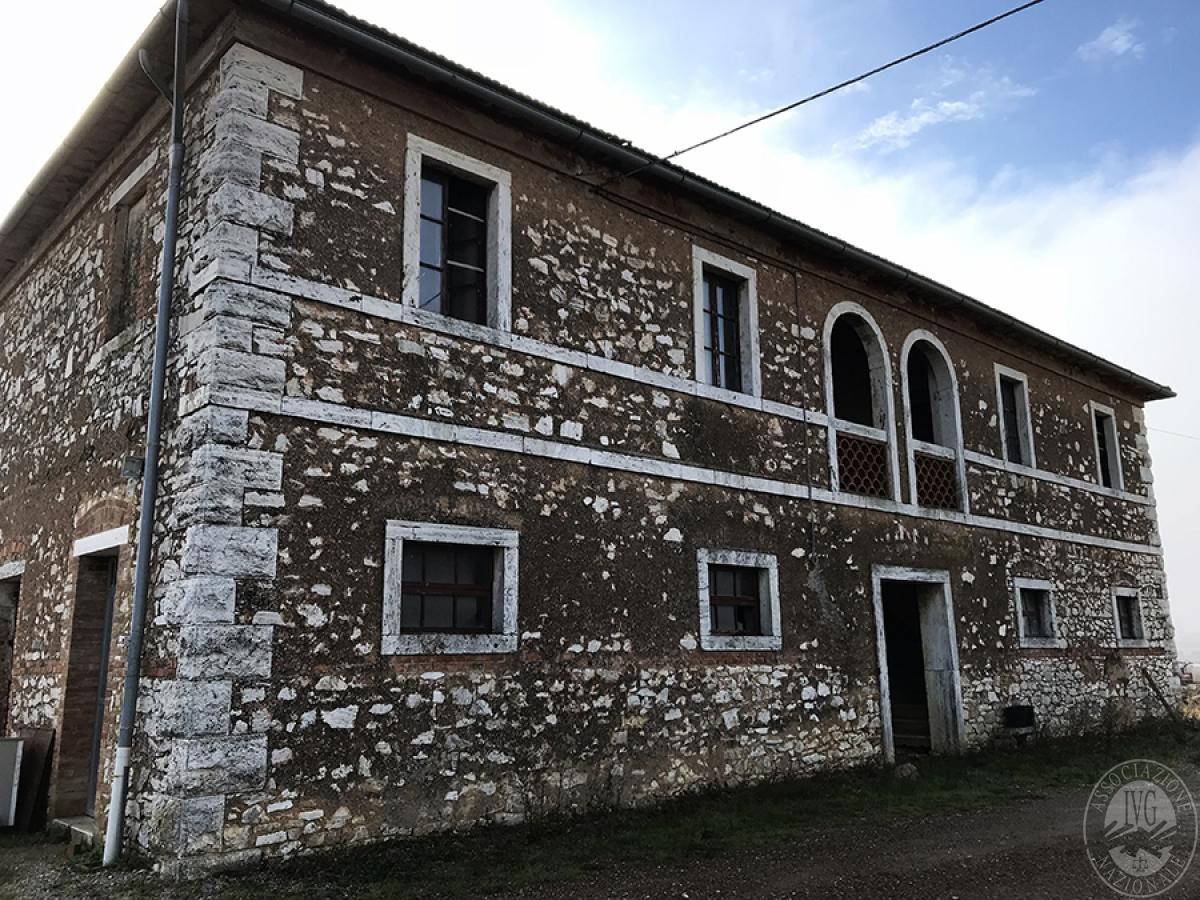 Appartamenti, magazzini, terreni ad ASCIANO in loc. Pianella 7