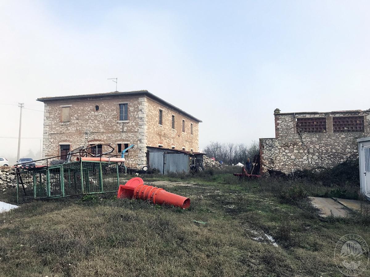 Appartamenti, magazzini, terreni ad ASCIANO in loc. Pianella 12