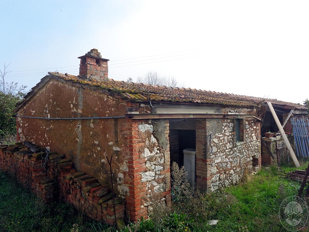 Appartamenti, magazzini, terreni ad ASCIANO in loc. Pianella 16