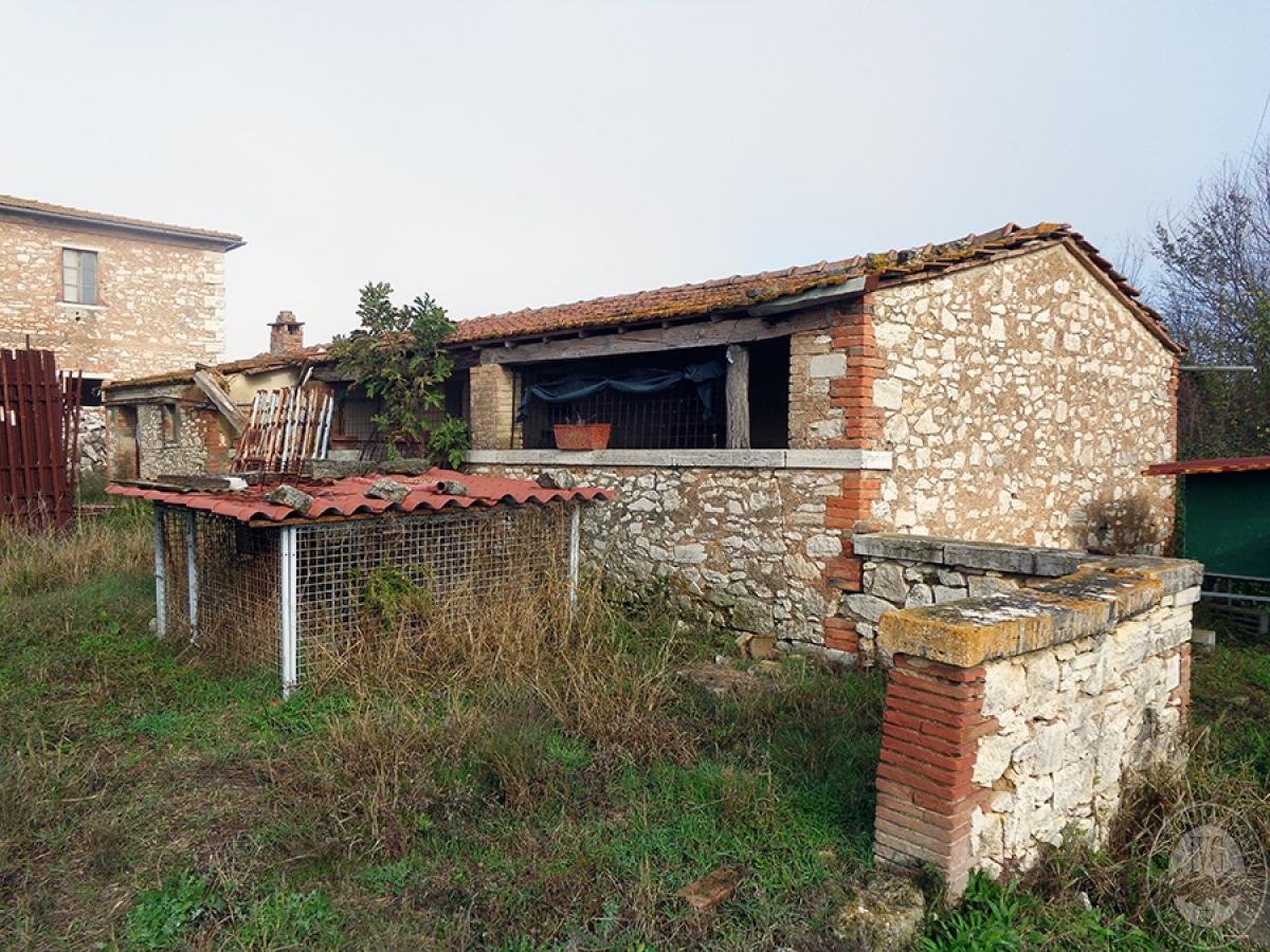 Appartamenti, magazzini, terreni ad ASCIANO in loc. Pianella 17