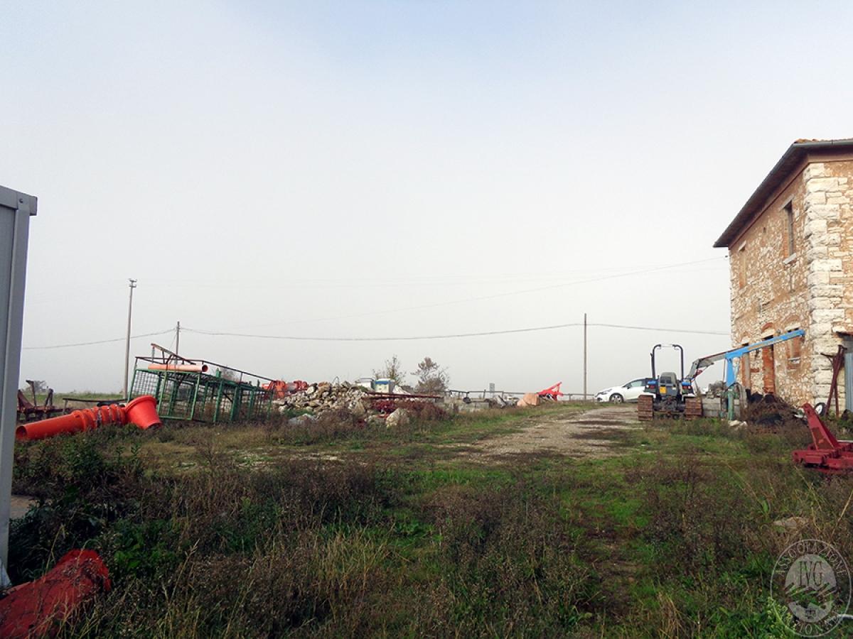 Appartamenti, magazzini, terreni ad ASCIANO in loc. Pianella 23