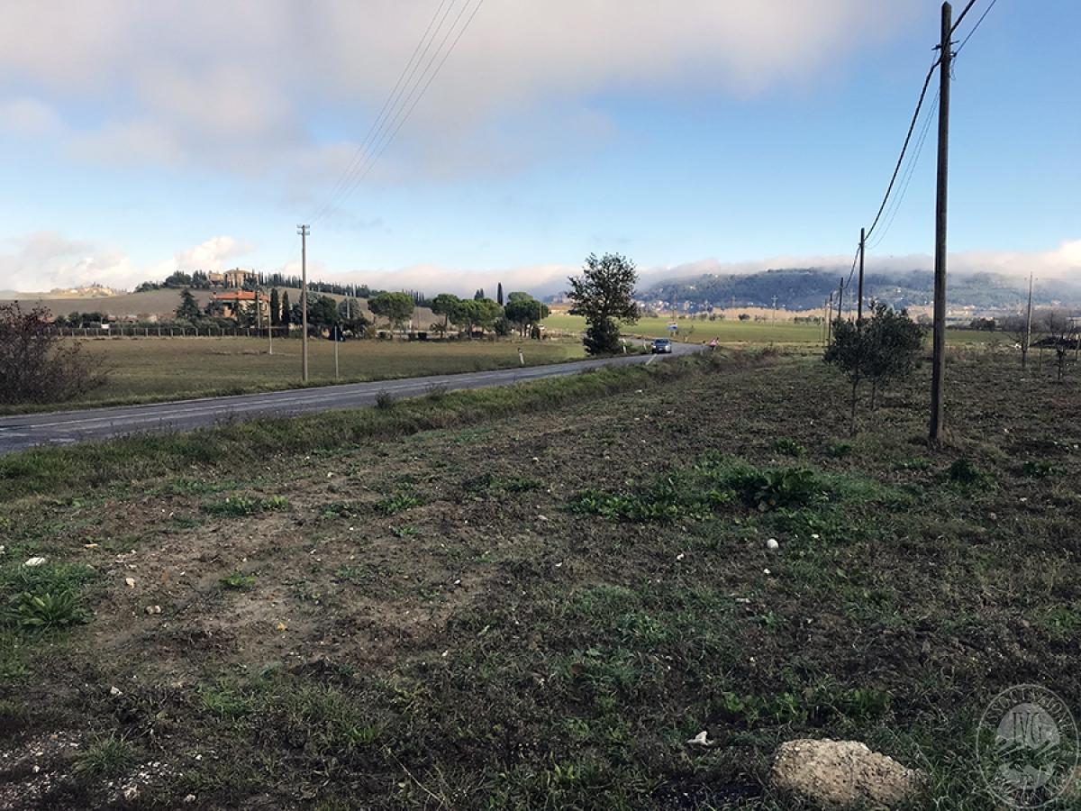 Appartamenti, magazzini, terreni ad ASCIANO in loc. Pianella 33