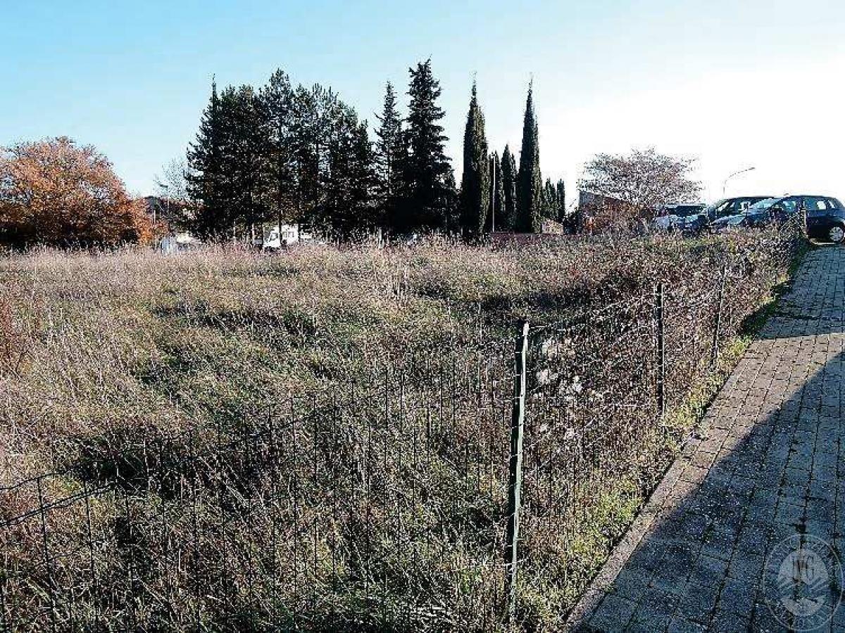 Area verde a Sovicille in loc. Le Mandrie - Lotto 7