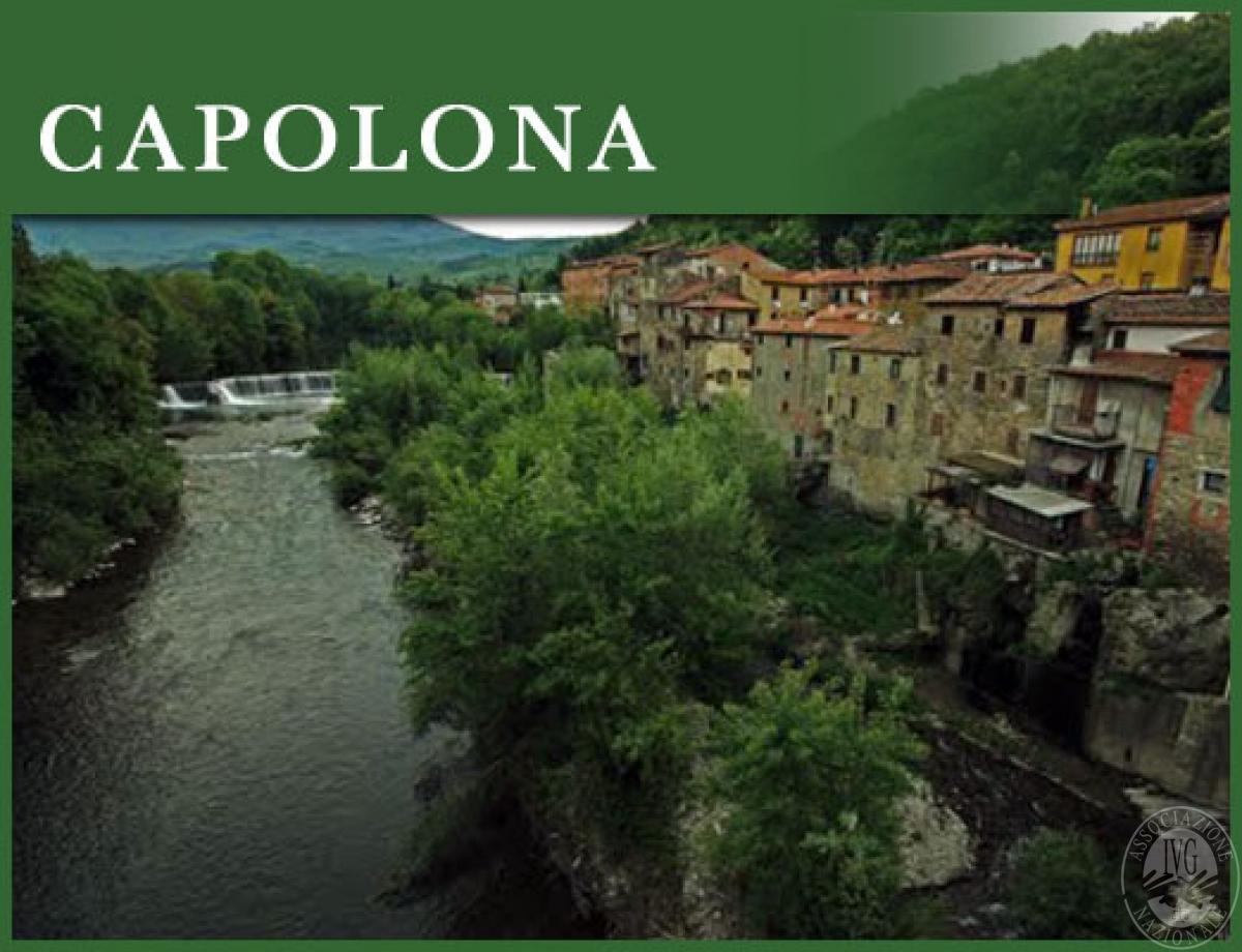 Deposito a CAPOLONA - Lotto 2