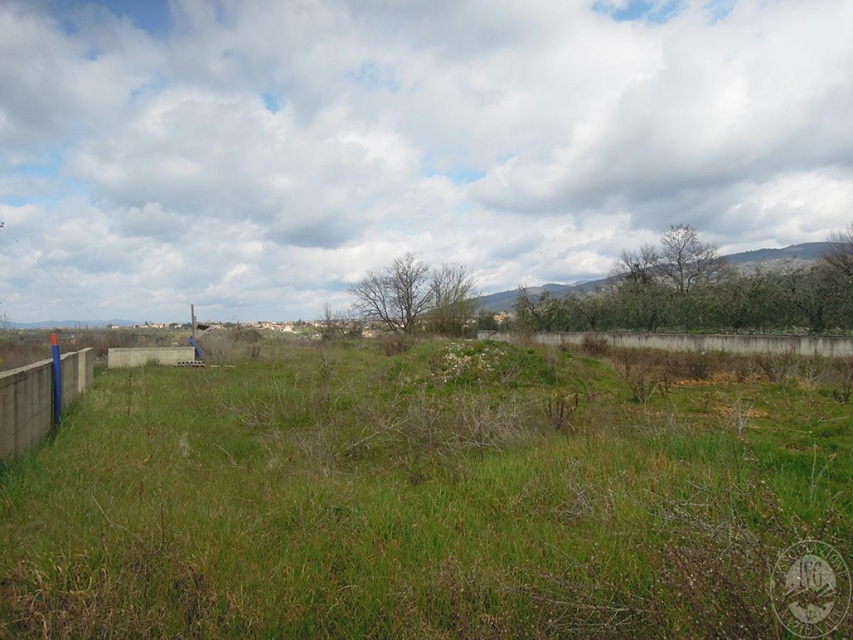 Terreno edificabile a TERRANUOVA BRACCIOLINI in loc. Piantravigne 11