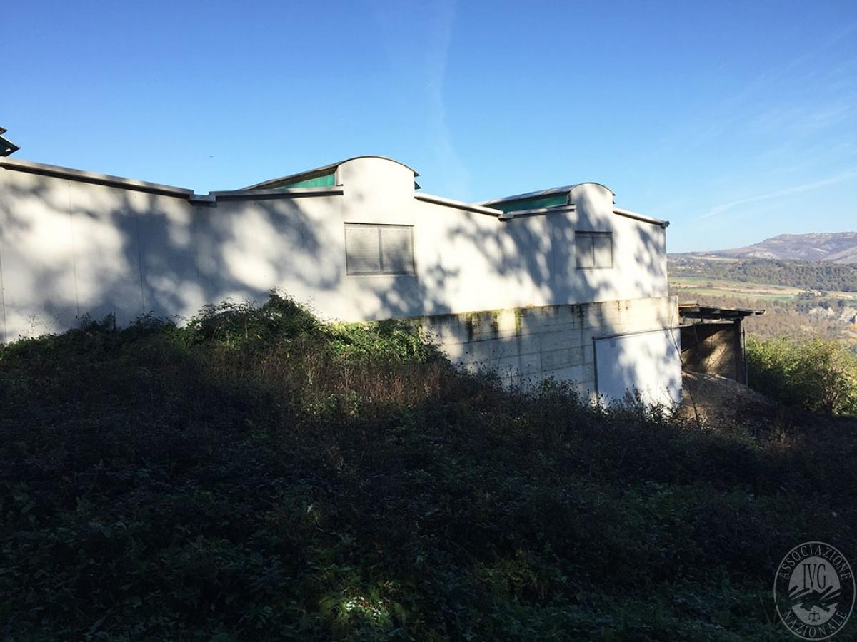 Fabbricato produttivo a SAN CASCIANO DEI BAGNI in loc. Podere Casa del Rio - Lotto 2