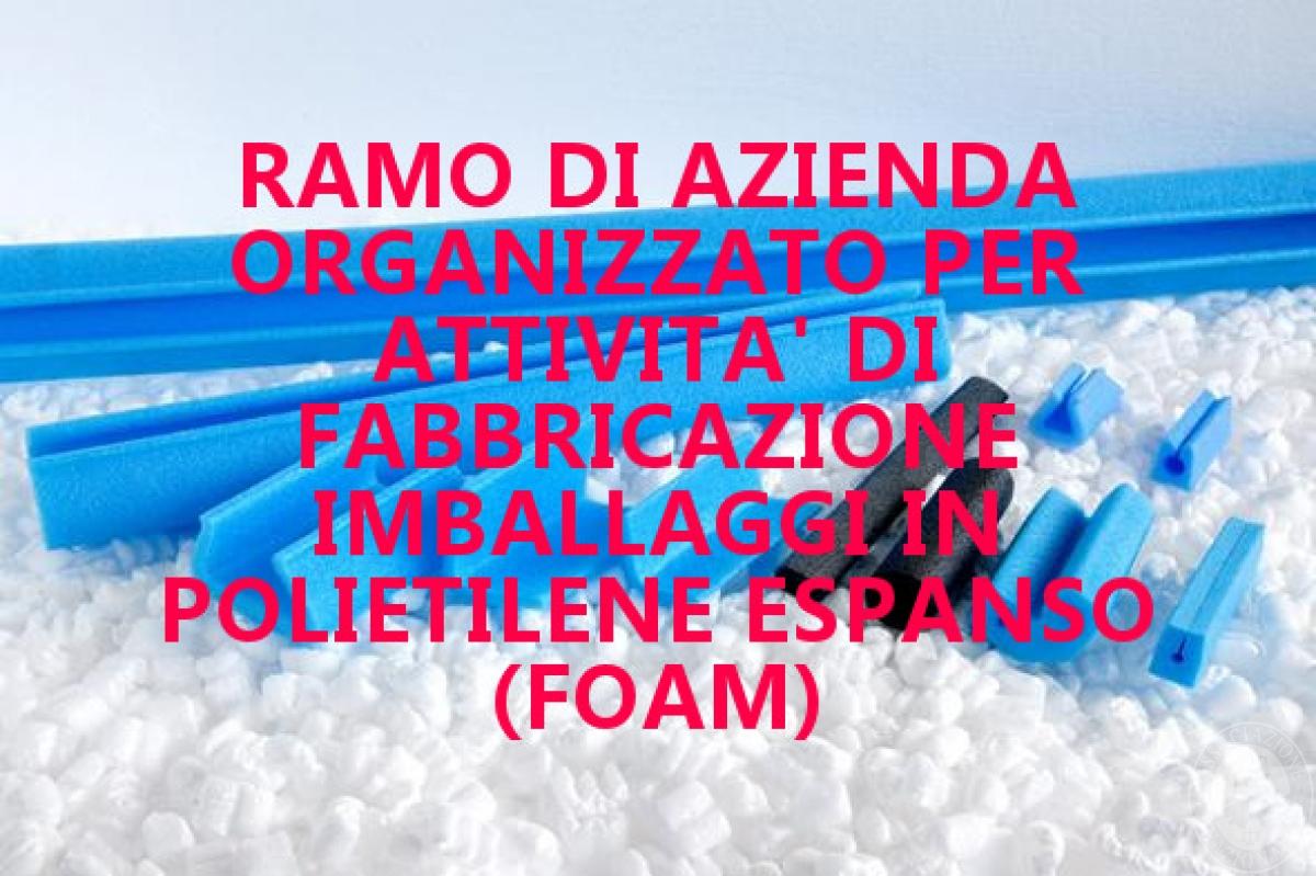 Azienda organizzata per la fabbricazione di imballaggi in polietilene espanso (foam)